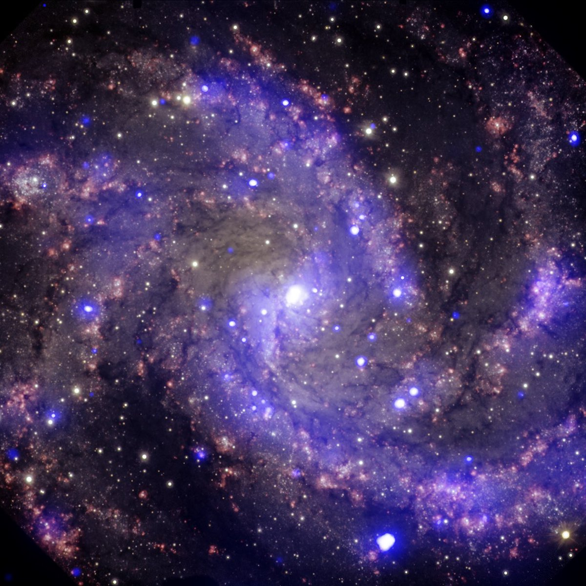 At least 10 supernova explosions have occurred in NGC 6946 since the early 20th century, earning it the nickname the #Fireworks Galaxy. Located about 22 million light years from Earth, this spectacular spiral galaxy is roughly 40,000 light years across. #4thOfJuly #4thofJuly2020
