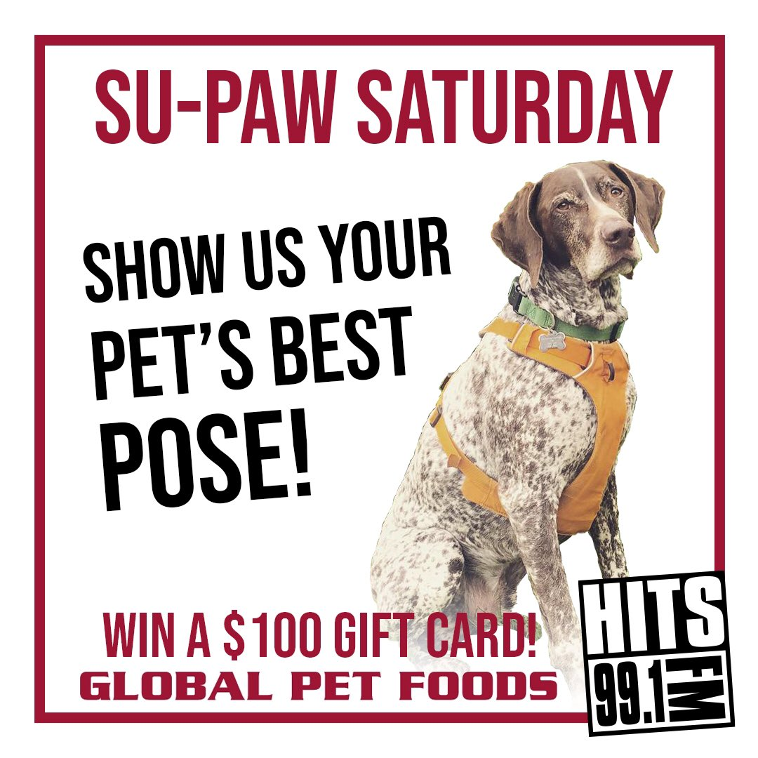 We want to see your pet's best look! Show us and you could win a $100 gift card from @GlobalPetsNL