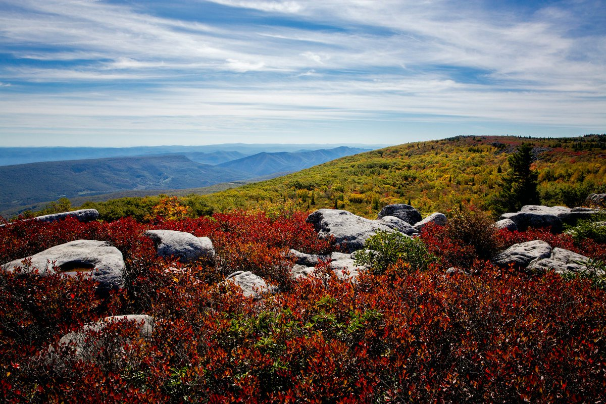 Here is some #AlmostHeaven red, white, and blue to wish you a happy Independence Day. Are you spending your 4th of July road tripping to your next adventure or enjoying one of our historical small towns?   : Dolly Sods Wilderness <br>http://pic.twitter.com/Mnmar185KS