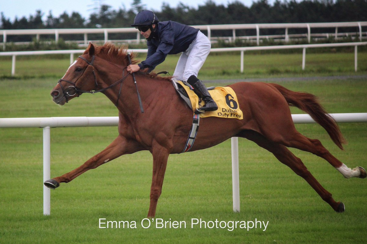 SERPENTINE absolutely storms home in the Derby. Here he is, only 7 days ago winning at The Curragh.