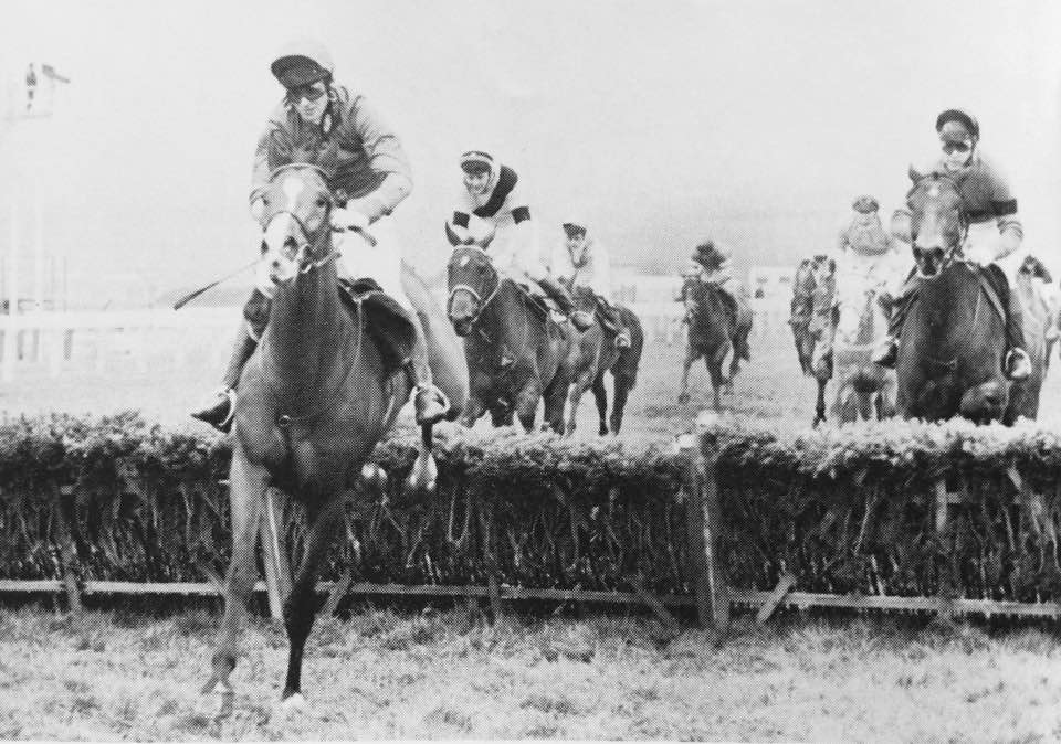 Thats some 1-2-3 The 1983 Sun Alliance Hurdle Sabin Du Loir with Graham Bradley for Michael Dickinson wins from Dawn Run and Ron Barry with future Grand National winner in 3rd West Tip.