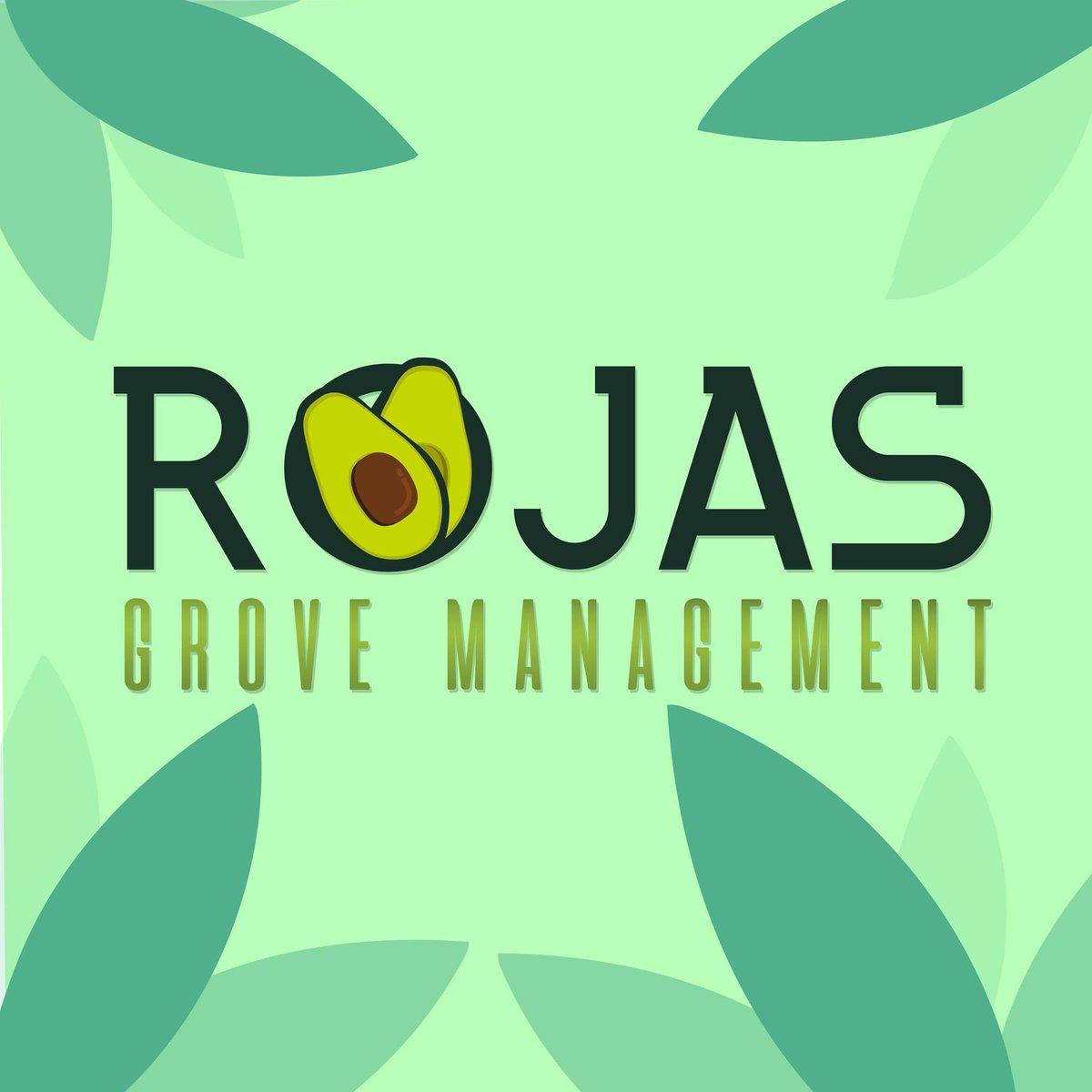 Place your #lemon, #avocado and #orange orders! Ship #nationwide 🍋🍊🥑 #RojasGroveManagement #FamilyHustle