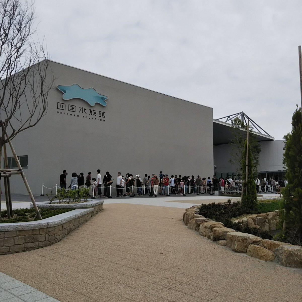 test ツイッターメディア - 1ヶ月前にオープンした四国水族館に来てみました。(ゴールドタワー北) あつ森のおかげで息子が興味津々。 アカシュモクザメ見てくるぞい。 この時間だとチケット購入15分待ち。 https://t.co/W8RMXIhFLG