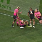 'Crap' Joey Leilua dog shot sparks fire as Tigers-Panthers thriller ends in a wild brawl 😲👉 https://t.co/MX3brz7fVn