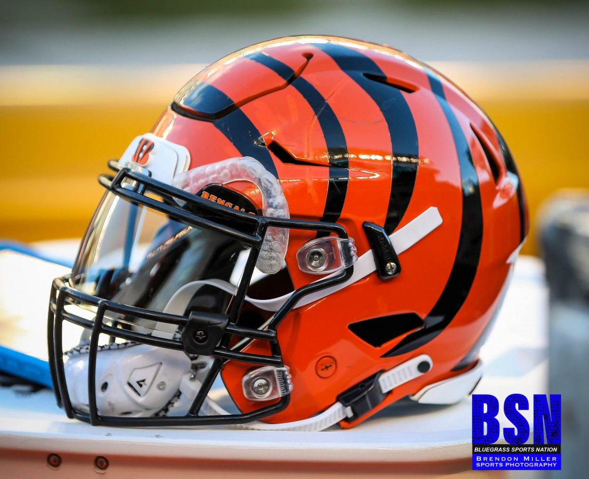 If the city of Cincinnati was guaranteed to win a championship in the next 10 years, would you rather it be won by the Bengals or the Reds? Retweet for the Bengals and like for the Reds. Photo credit to @BGSportsNation. https://t.co/uaqZAhew1g