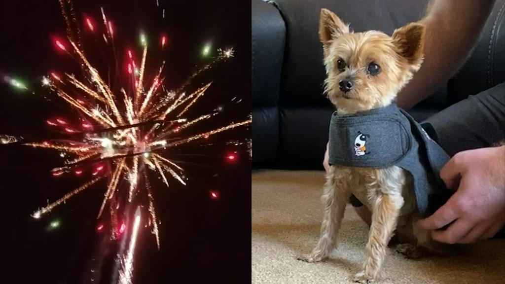 July 4th pet safety: Tips to reduce anxiety during holiday fireworks abc7chicago.com/6297406/?ex_ci…