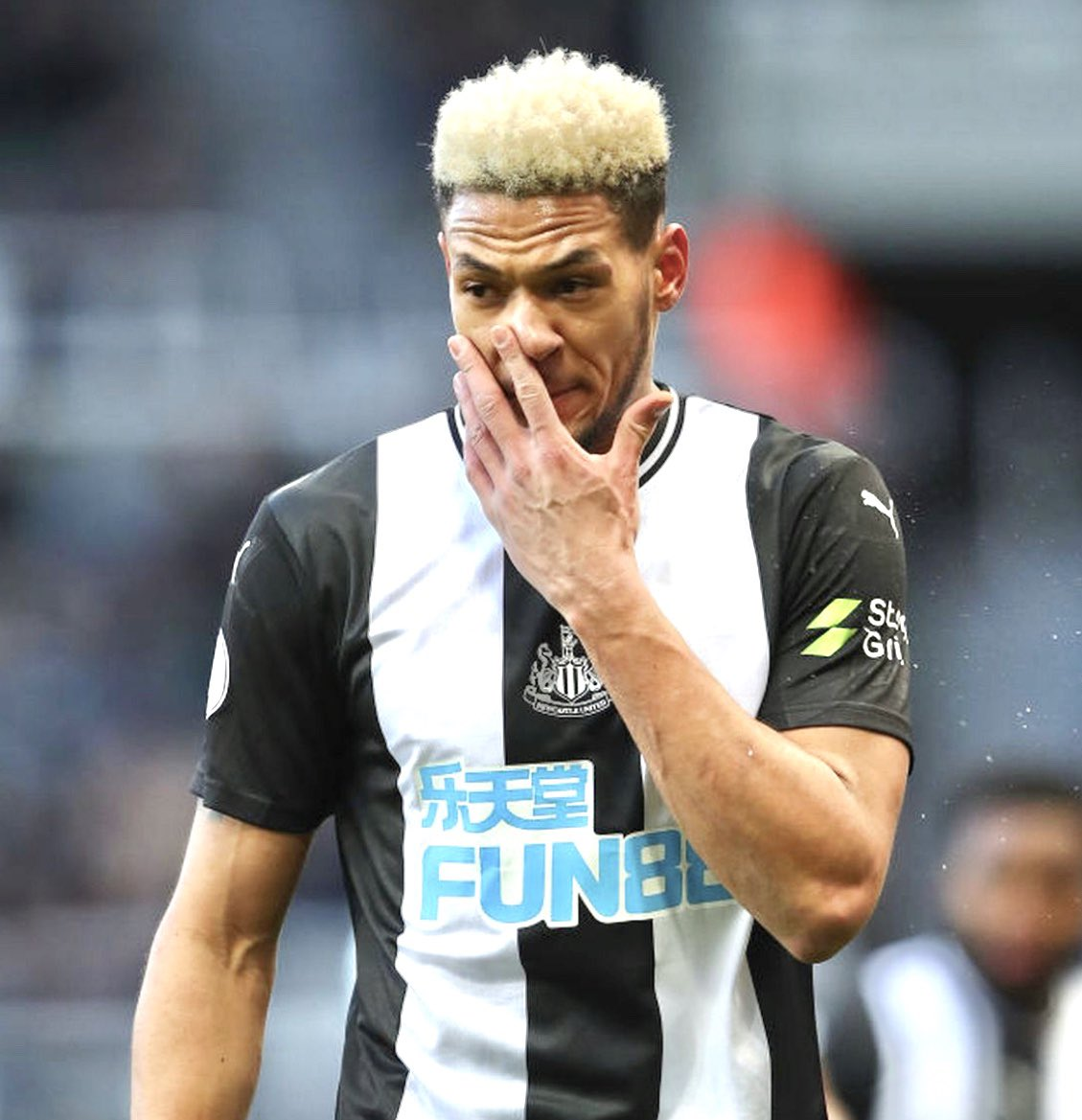 New to FT , please RT and help me gain a following #NUFC #gainSZN pic.twitter.com/mhHXQLtTQz