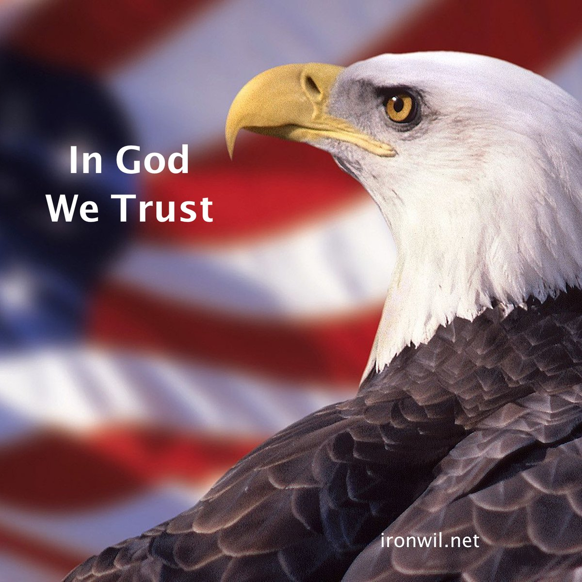 from our beginning, we believed in one thing above all, GOD the FATHER and HIS SON JESUS CHRIST. #America #FaithinGOD #FaithinCHRIST #ir0nw1l #Motivation #Autodidact #Ambition #SuperApp #BusinessOwner #MakeMoney #Entrepreneur #3KeystoWealth #TLYAW<br>http://pic.twitter.com/Vd0zGZm8Mq
