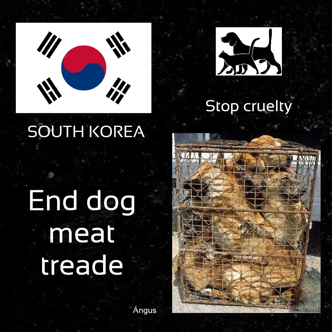 @MaryJoe38642126 @Jaemyung_Lee #SouthKorea, you should think about stopping #torturing #animals and better implement #laws for their #protection and #welfare. Your #slaughterhouses are the dirtiest #places in the #world, they are a matter of #publichealth. #Ban #Boknal, is #hell. https://t.co/AAwo1vP4el