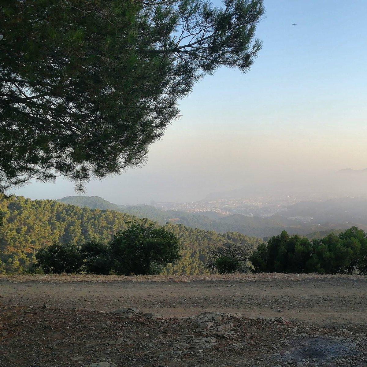 Desde el Mirador del Cochino en Los Montes de Málaga #montesdemalaga #konmegan #naturaleza #nature #mountain #montañas #lifestyle #andalucia #senderismo #senderos #Senderista #lovemountains #photosofmalaga #megustaesterincon #bosque  #vistasdemalaga #miradordelcochinopic.twitter.com/B2bdr6n2dz