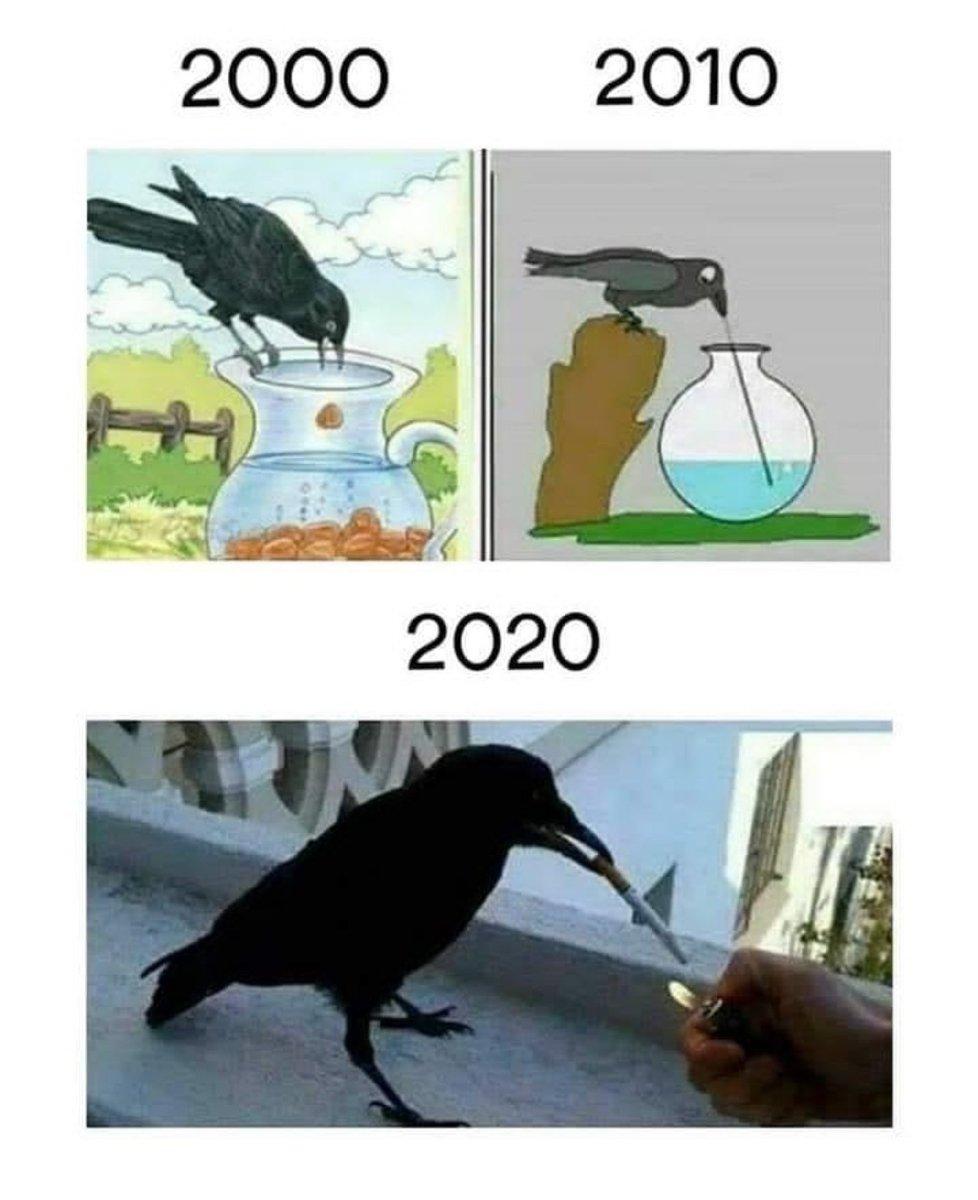 New gen crows be like #fun #MEMES #memesdaily #follo4folloback #folloback #Like4like #like4likes <br>http://pic.twitter.com/5hTMVODDXG
