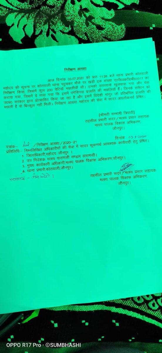 @Vivekanandrai96 @jaunpurpolice @ghazipurpolice @Uppolice @adgzonevaranasi Agar koi 12 lack ki machli rakhega to usme 25 kg mangur kyu rakega police hamesha sahi news ke alwa sb kuch batati h apna medal lene ke liye ye kisi ko bhi badnaam kr sakte h https://t.co/KUt5TimaSP