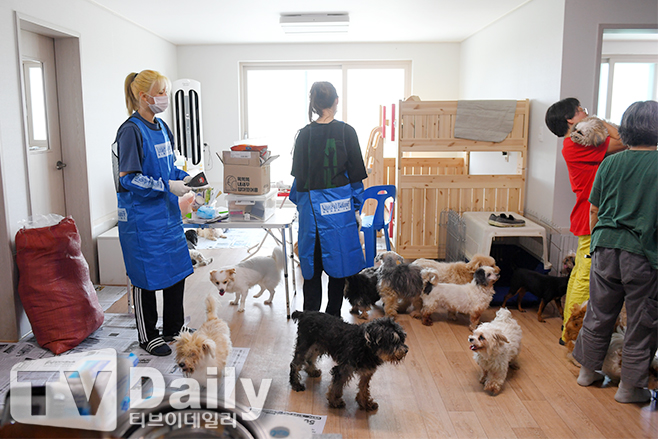 Jeongyeon went together with Seungyeon today to volunteer at the animal shelter. This is the same volunteer group in which they were listed as honorary volunteers recently along with Tzuyu.  @JYPETWICE pic.twitter.com/OpjwoxHCba  by Teudoongie Subs