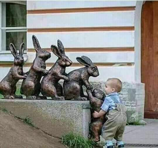 Learn from children #Kindness, #support, #love for those around us, maybe we should be re-educated and it is the #children who should be our #teachers.🧚♂️🧚♀️🌸🌸