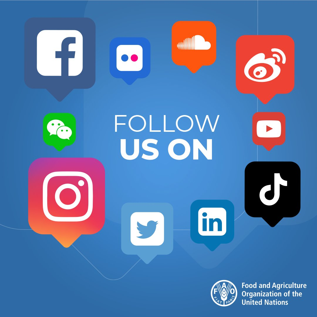 Did you know we are on Facebook, Instagram, TikTok and so much more?   Go check us out to find more info on how we are working to end hunger & poverty, & protecting people's livelihoods! Come say hello!  👉 https://t.co/7u0QPyaaW0 https://t.co/JkiU9IGlvM