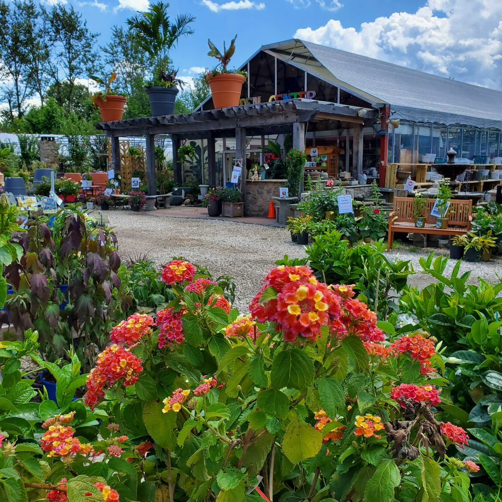 Holly Days Nursery Garden Center Landscaping On Twitter Check Out All Of Our Holiday Weekend Savings Https T Co Vfqor6geqz Link In Bio Have A Great Sunday Everyone And Stay Cool Hollydaysnursery Gardening