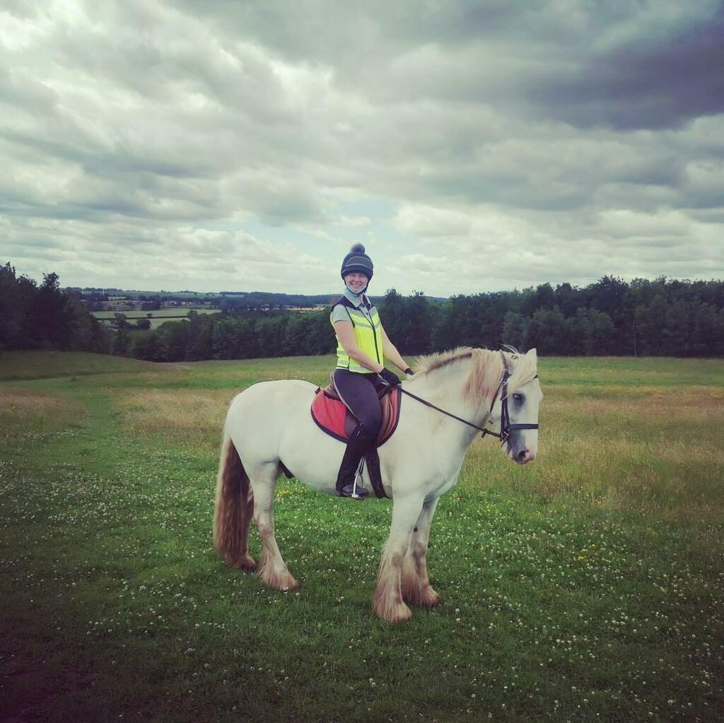 @nicolegenders having fun on cheeky Baloo for a change!  . . .  #horseride #horseriding #horseriders #horseback #horsebackriding #horsetrek #horsetrekking #ponytrek #ponytrekking #horsehack #horsehacking #hackingout #horsesofinstagram #horsesofinsta #instahorses #horsepowe…pic.twitter.com/aAW6emKp7d