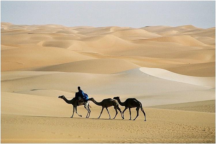 Ce qui embellit le désert, dit le petit Prince; c'est qu'il cache un puit quelque part...A.de Saint-Exupéry  Hommage a l'Algérie ici le désert d'Adrar. pic.twitter.com/50giKYQhNc