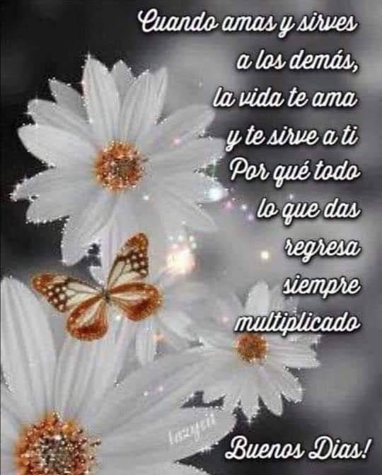 #FelizDomingo a tod@s  #BuenosDías   #Bendiciones pic.twitter.com/uvIKRB2Rm5