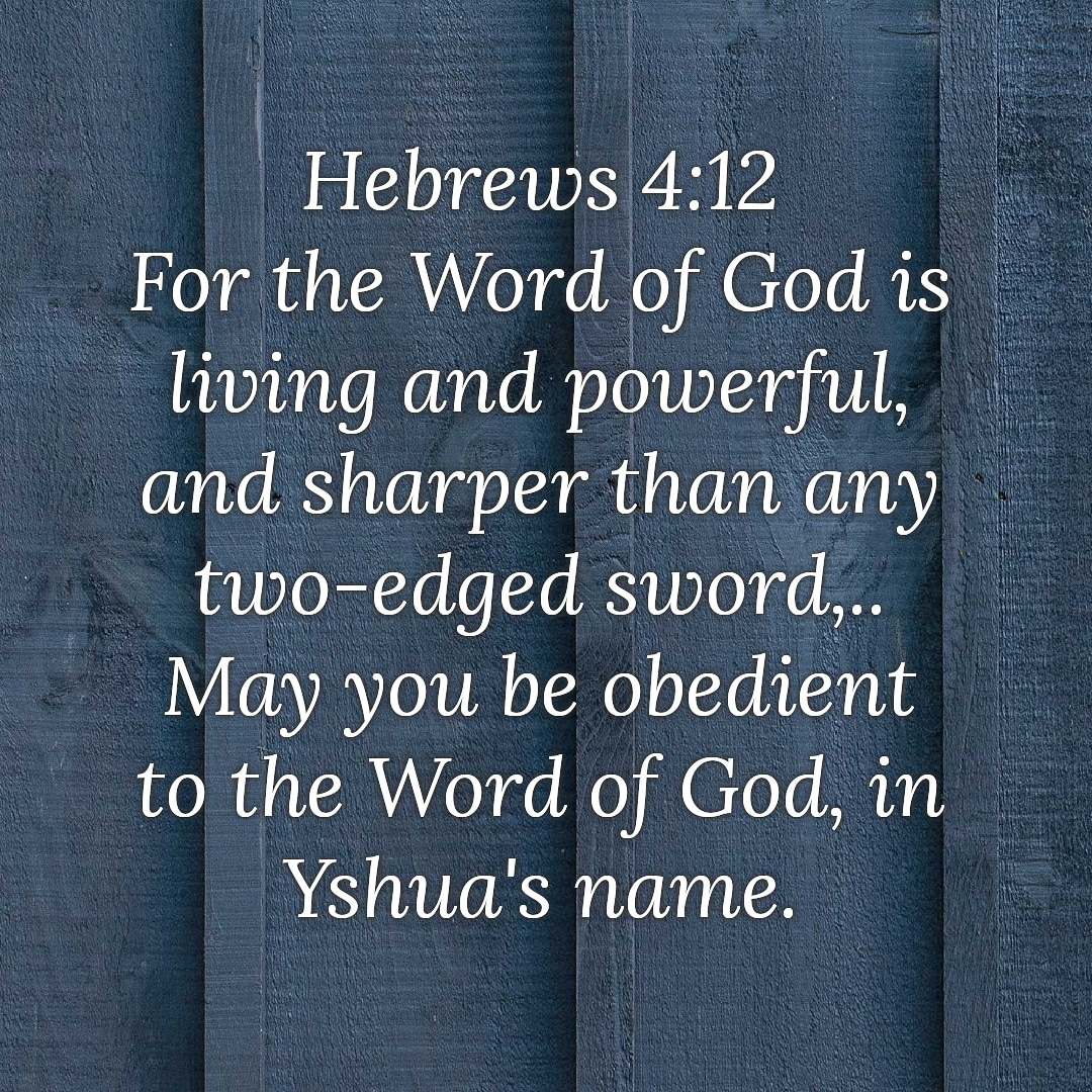 #yshua #yshuaisking #yashua #yeshua #jesus #lionofjudah #lionofyhudah #god #lord #messiah #christ #truth #life #blessing #miracle #mercy #patience #dailyword #bible #hope #faith #love #church #amen