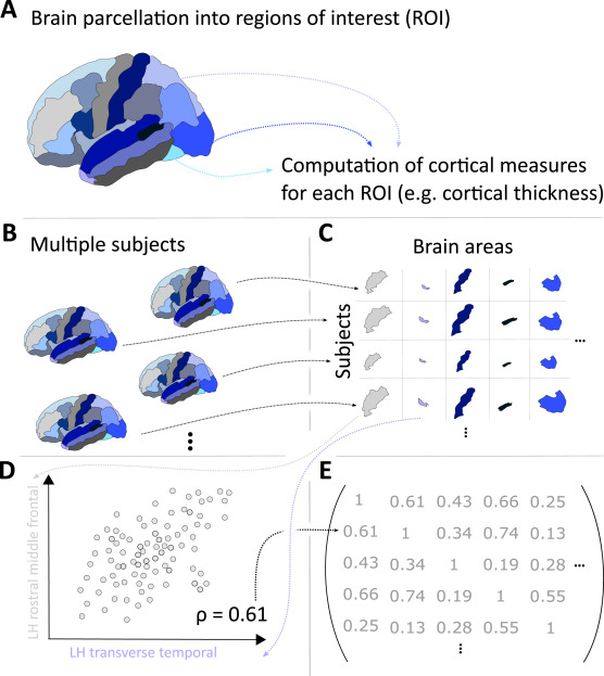 New paper - Reliability and comparability of human brain structural covariance networks @NeuroImage_EiC , with @ConnectomeLab @yujiang_wang @tomowen15 and others. https://t.co/r3cqt2iUaV https://t.co/388CI9Cajx