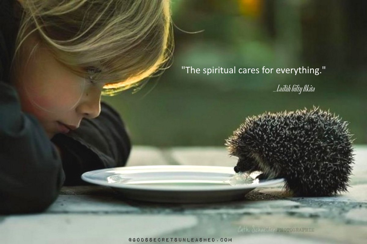 """""""The spiritual cares for everything."""" _Lailah Gifty Akita  #spiritual #compassion #empathy #true #self #soul #divine #universal #energy #oneness #truth #love #light #growth #purpose #experience #awareness #empowerment #peace"""