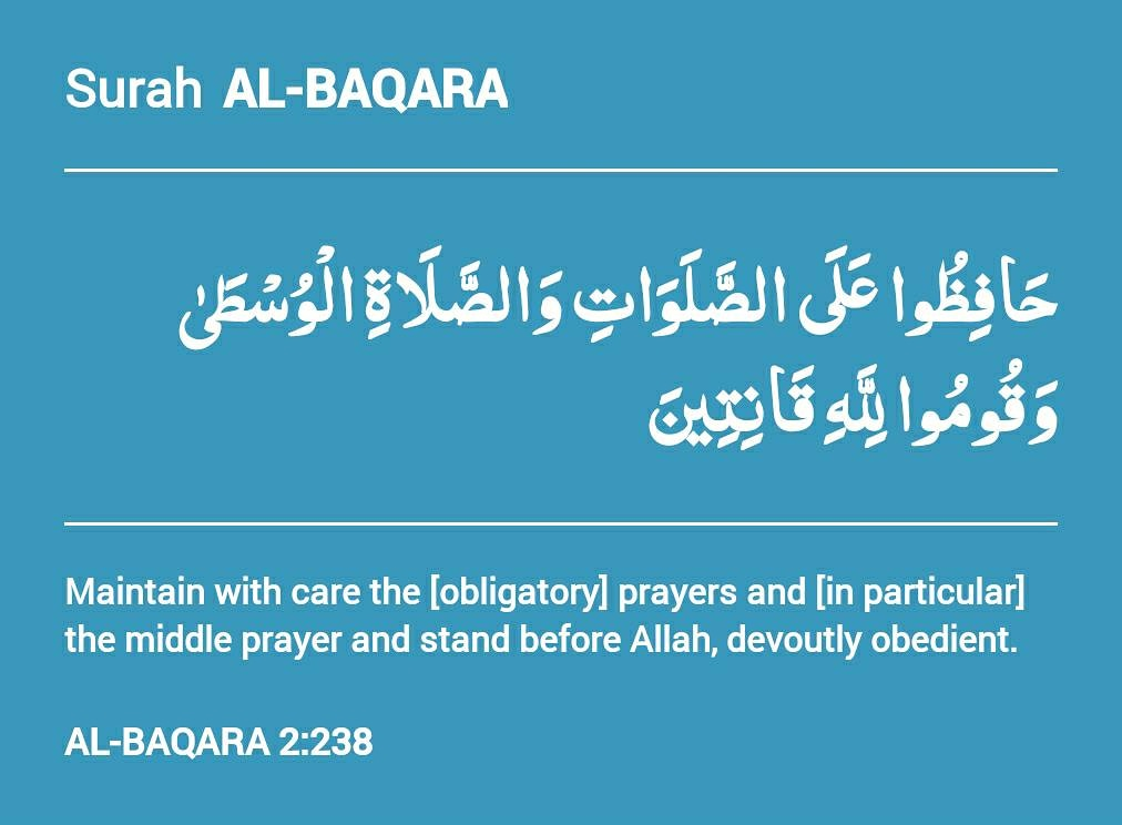 Maintain with care the [obligatory] prayers and [in particular] the middle prayer and stand before Allah, devoutly obedient. ◇ ◇ #quran #quranic #islam #quranquotes #quranrecitation #quranverses #muslim #allah #quranverse #quranhour #quransayings #islamic #deeni_life https://t.co/uf74qyjgDD