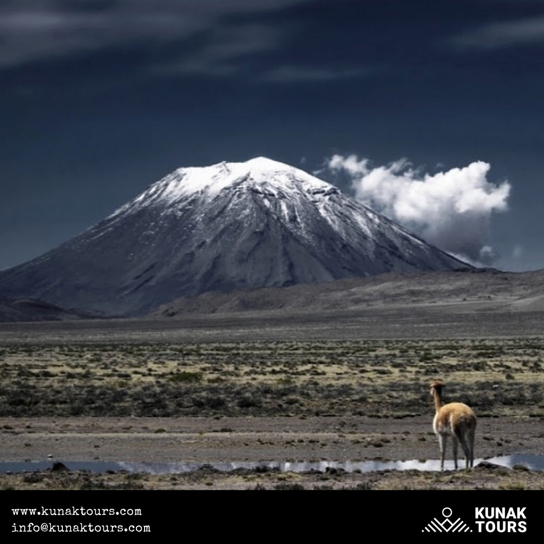 Altiplano, Peru  #travelagency #southamerica #Cusco #Lima #machupicchu #Peru #Bolivia #Chile #Argentina #_amazingtravelplaces #southamericatour #topworldpix #letsenjoyperu #experienceperu #discoversouthamerica #igtravel #ctperu #photooftheday #travelagenciesoftheworldpic.twitter.com/hM5R2S0T6J