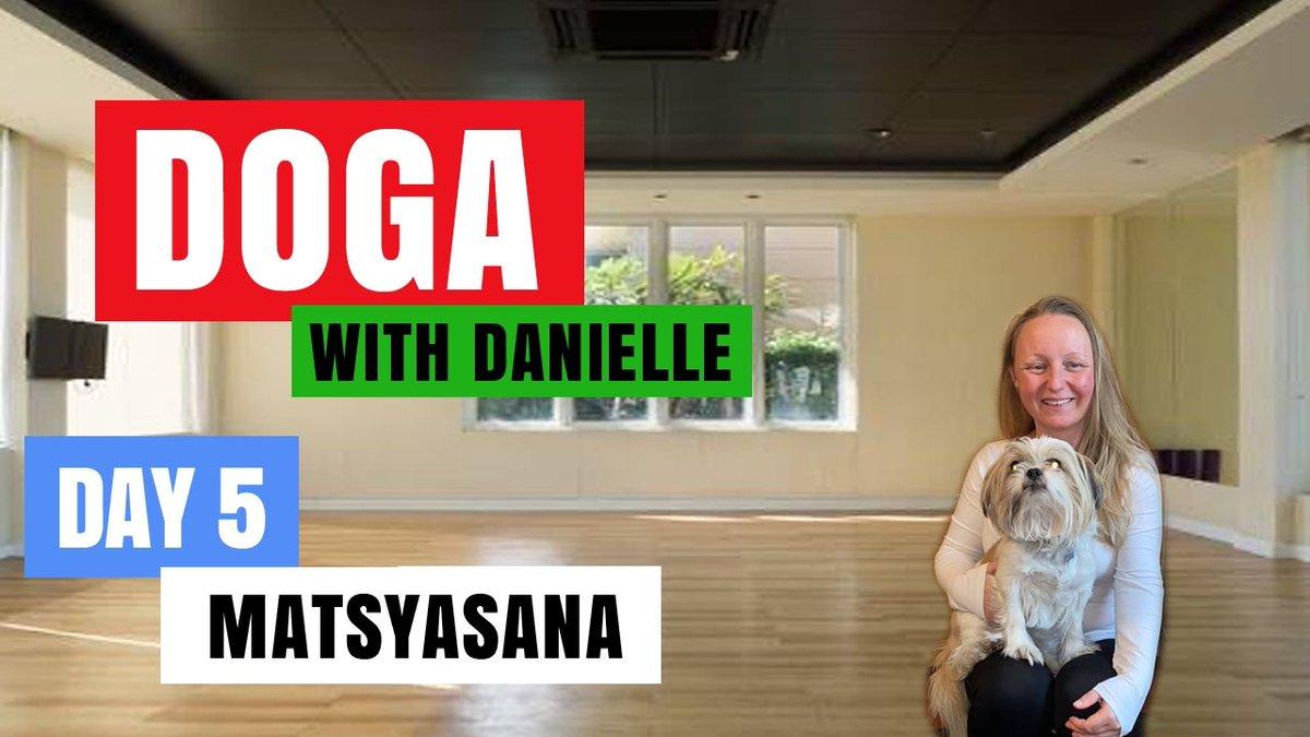 Day 5 - Matsysana • #DogaWithDanielle  #ChildOfGod #ChildOfGodTeam #ChildOfGodMovement #Doga #Yoga #Movement #Breathe #Breathing #Health #Fitness #Malshi #Shitsu #Maltese #Dog #DogLover #LucyTheMaltese #MentalHealth #Spirituality #Recovery #Matsysana   https://t.co/69rSuaectI https://t.co/QI9ZD1F0jo