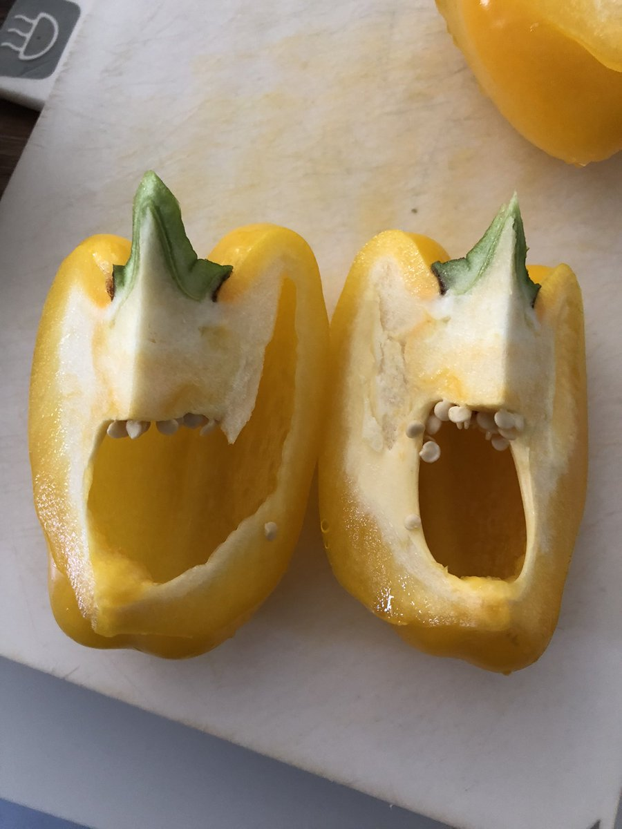 I think I may have pissed this pepper off and now I'm terrified.