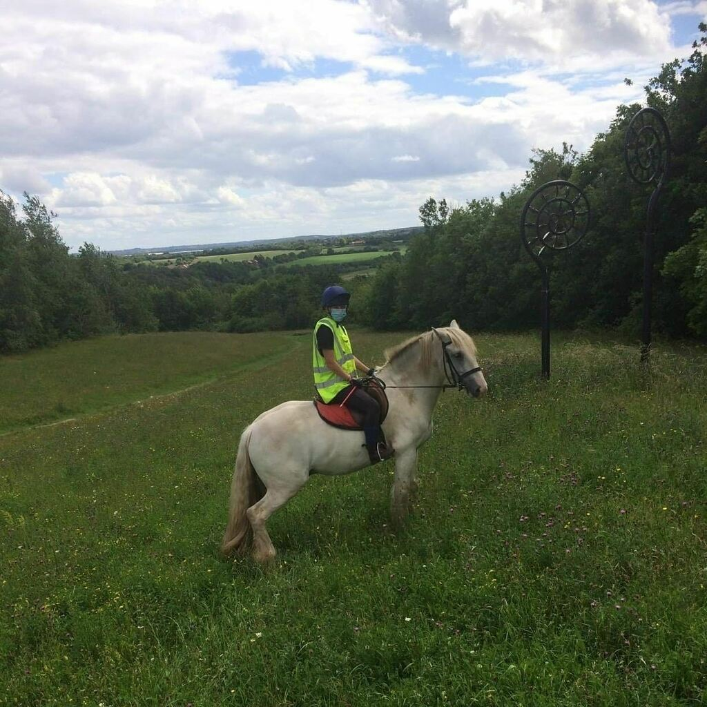 Alex taking his favourite Baloo out for a spin!  . . .  #horseride #horseriding #horseriders #horseback #horsebackriding #horsetrek #horsetrekking #ponytrek #ponytrekking #horsehack #horsehacking #hackingout #horsesofinstagram #horsesofinsta #instahorses #horsepower #horse…pic.twitter.com/Lw0s0cxAVE