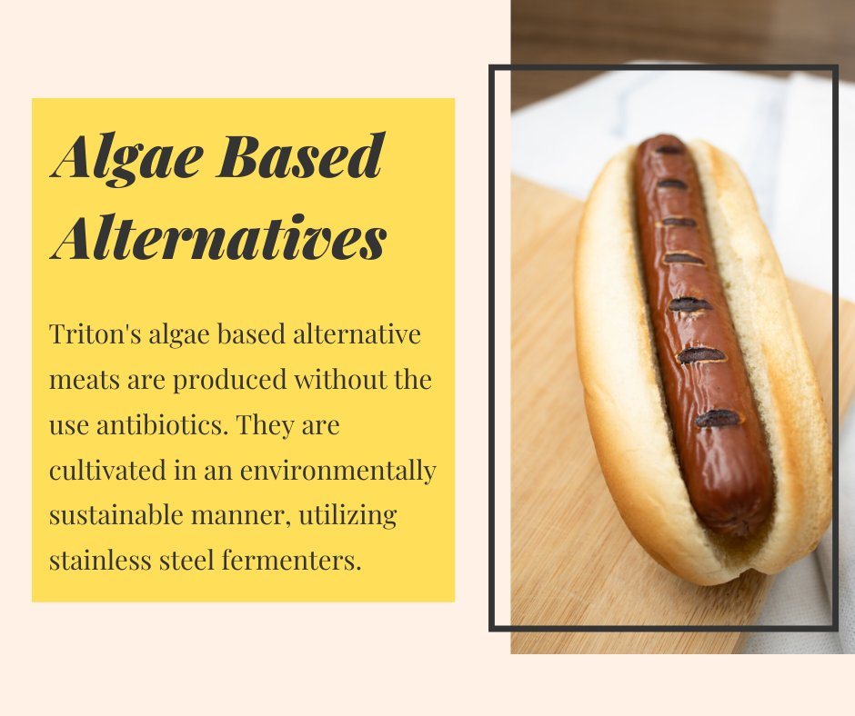 Our algae based alternative meats are an excellent #nutritious, #sustainable, and #vegan substitute to traditional animal proteins. https://t.co/6XB0Zdl4q4