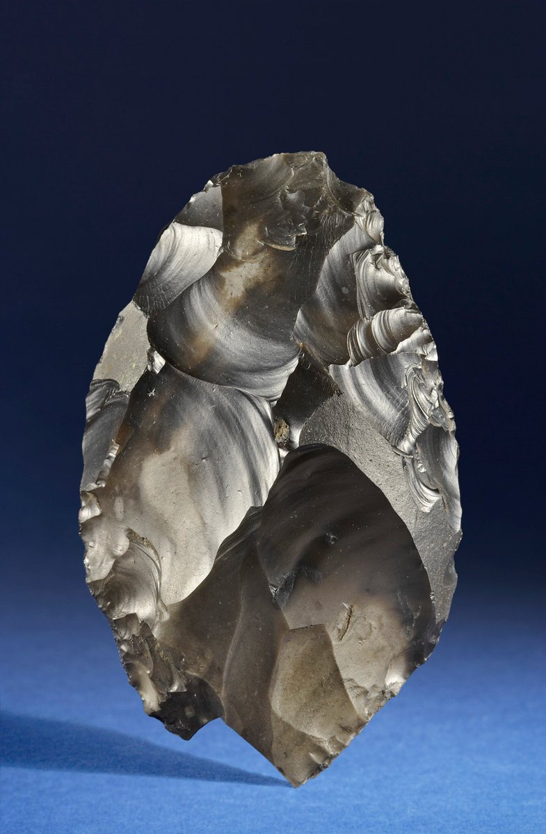 The Happisburgh Handaxe - found on a Norfolk beach in 2000 by a man walking his dog - this beautiful flint axe is about 700,000 years old. It is evidence for one of the earliest occurrences of early humans in NW Europe. Image source and more information: https://t.co/FxYQFAXQQ3 https://t.co/IGwaFq2qdH