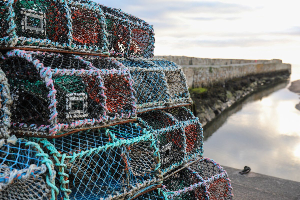 The Magic of St Andrews...crab and lobster pots wait at St Andrews Harbour to be taken out to sea on the next tide.