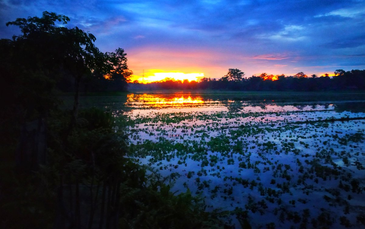 """""""Every sunset is an opportunity to reset."""" –Richie Norton #nature  #NaturePhotography #naturelover #landscape #landscapephotography #sunset #sunsetphotography #Assam #photography #PhotoOfTheDay #Scenery #Trending #photographyloverspic.twitter.com/r3RKWnNBUB"""