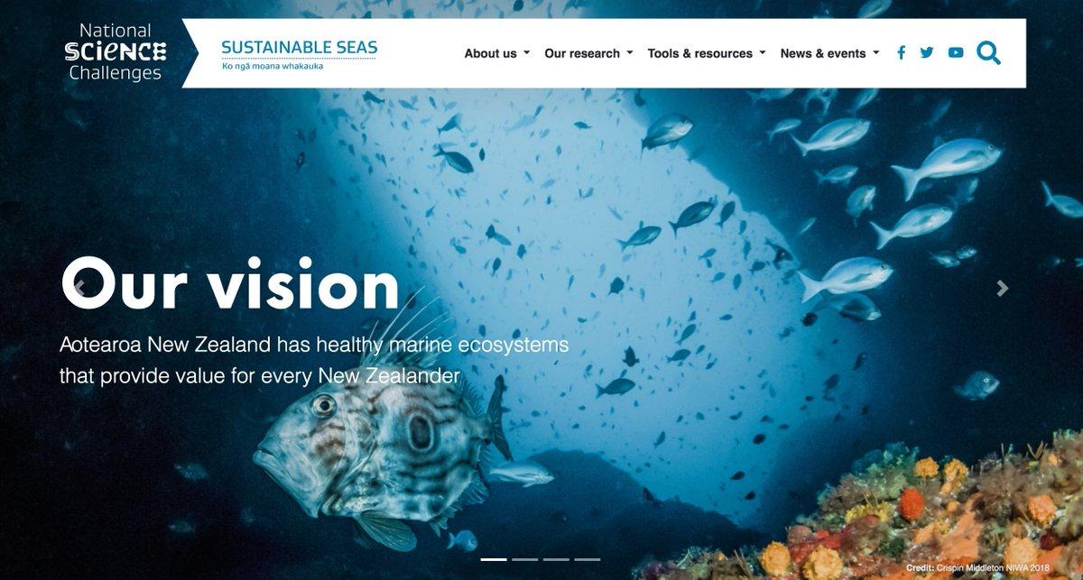 How beautiful (and beautifully informative) is the new @Sust_SeasNZ website?! Take a look -  https://t.co/4iRYgiJ3QP #STEMeducation @MBIEsci @NZScienceTeachr @niwa_nz @marinemetre2 @coastalmarinenz https://t.co/OwTRDNwcC4