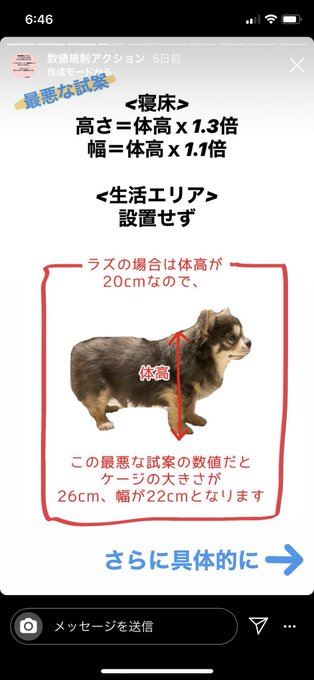 3 pic. 犬猫適正飼養推進協議会などのペット業界団体から今より酷い数値規制の試案がされました。6月中になってるけど7月10日まで受け付けしてくれるみたいです!今動かないと今後10年変わりません。どうかRTとメールの〈名前〉の部分を本名にして送って下さい🙏🏽  #数値規制