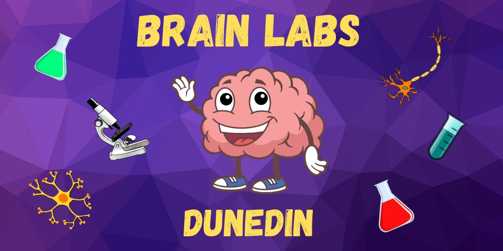 Our first Brain Lab as part of the @NZSciFest is happening at 𝗣𝗼𝗿𝘁 𝗖𝗵𝗮𝗹𝗺𝗲𝗿𝘀 𝗟𝗶𝗯𝗿𝗮𝗿𝘆 from 2-4pm today! Pack up your kids, meet our amazing neuroscientists and try some cool experiments!  https://t.co/of3LbdiTQZ   @NZScienceLearn #STEMeducation https://t.co/LbW3X5d2Di