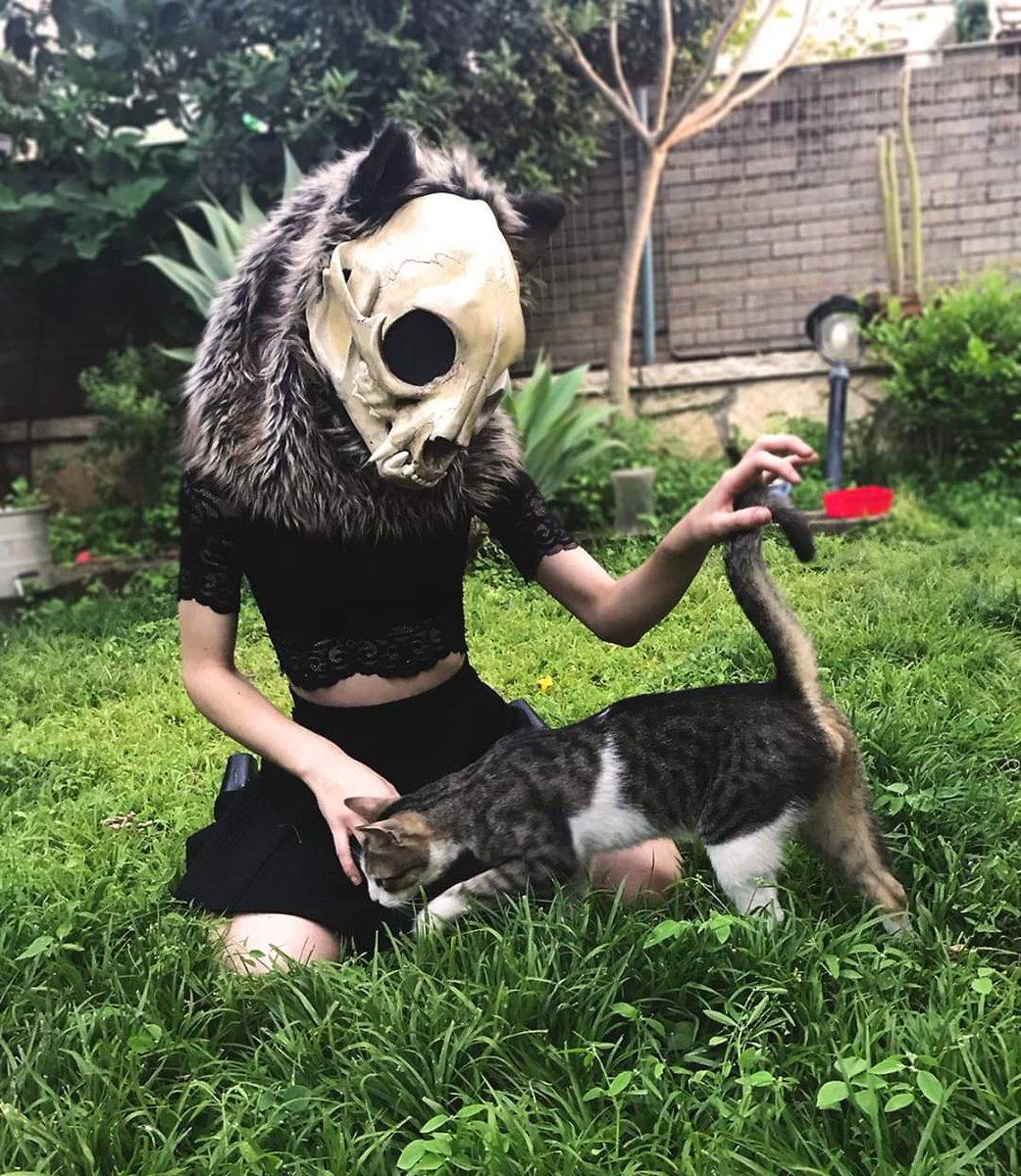 Fucking furry  #catgirl #Kitty #skull pic.twitter.com/V2QMhHMPGp