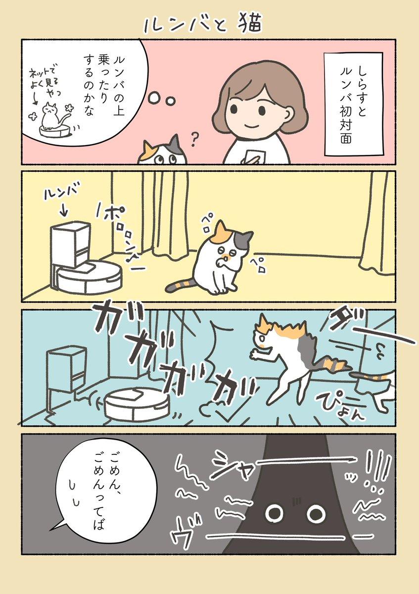 うちの猫と、ルンバの関係。