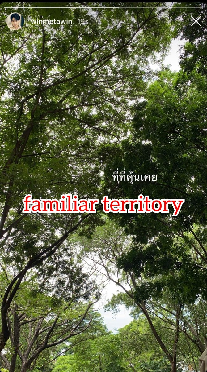 Caption : familiar territory IGs : Winmetawin #ยังคั่นกู