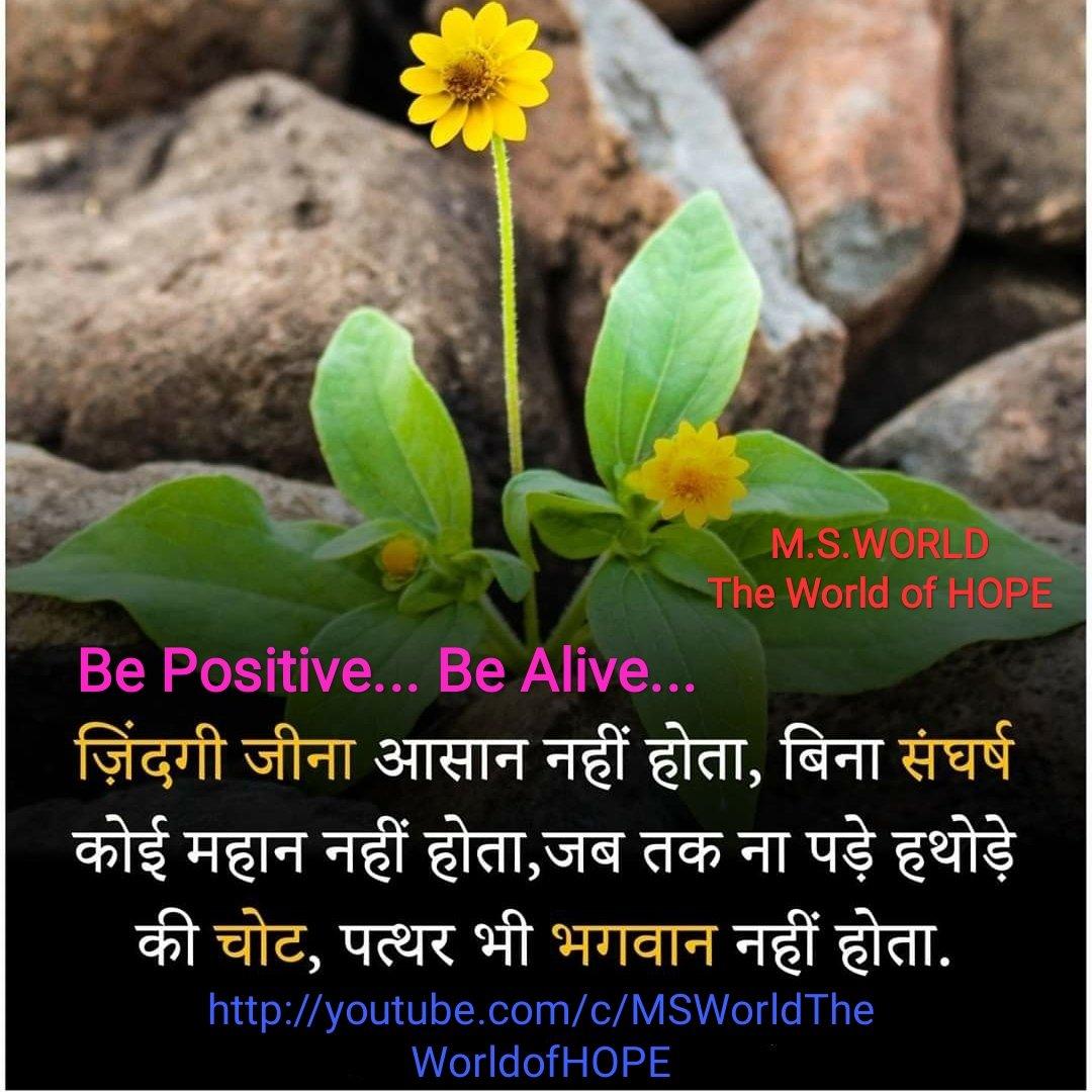 Be Positive.. Be Alive... मेहनत का दूसरा कोई विकल्प नहीं होता है... यदि आप जिंदगी को आसान बनाना चाहते हैं,  तो आपको संघर्ष के दौर से गुजरना ही पड़ेगा।।  https://t.co/Pkm5ponKLq  #mondaythoughts #MondayMotivaton #positivity #goodmorning #WednesdayWisdom #SundayMorning #sundayvibes https://t.co/KrVKkNFqkb