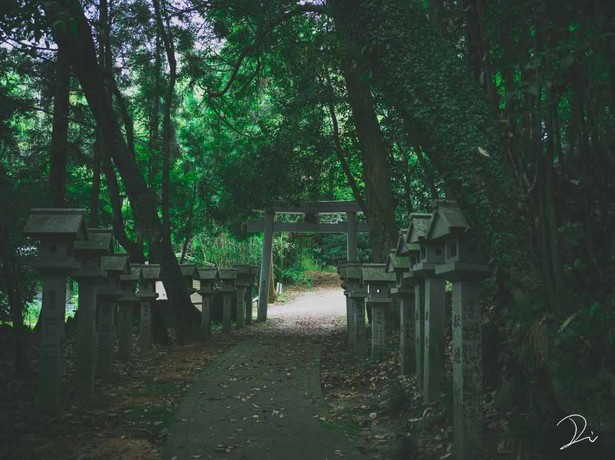 人知れず佇む静かな神社。