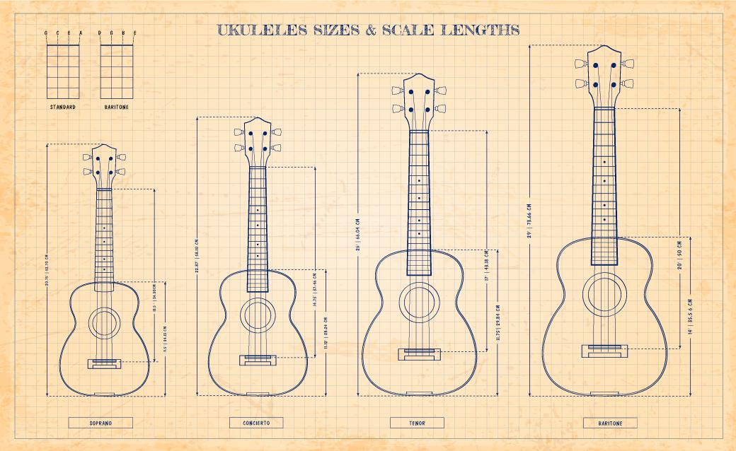 Ukuleles sizes & Scale Lengths https://t.co/pgp0e0hA2N