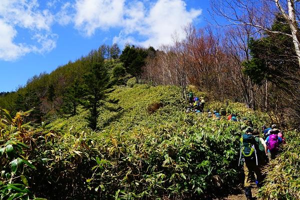 Yamakara_com photo