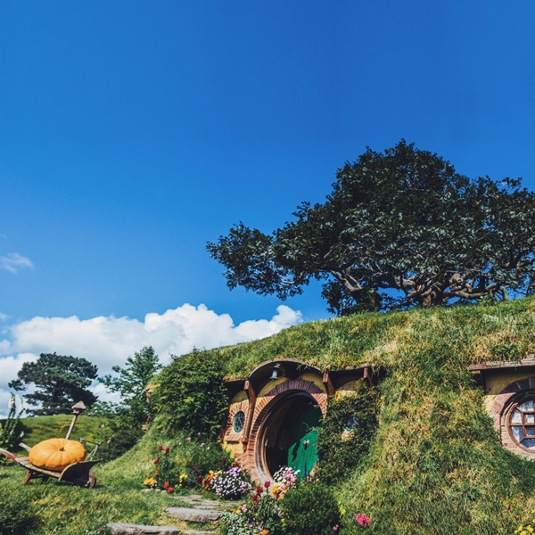 Calling out all movie lovers out there! Want to step into a fantasy world?   #NewZealand's magical landscapes made it the one place in the world that could bring Tolkien's epic masterpiece to life! #Hobbiton pic.twitter.com/07cQ6vbX47