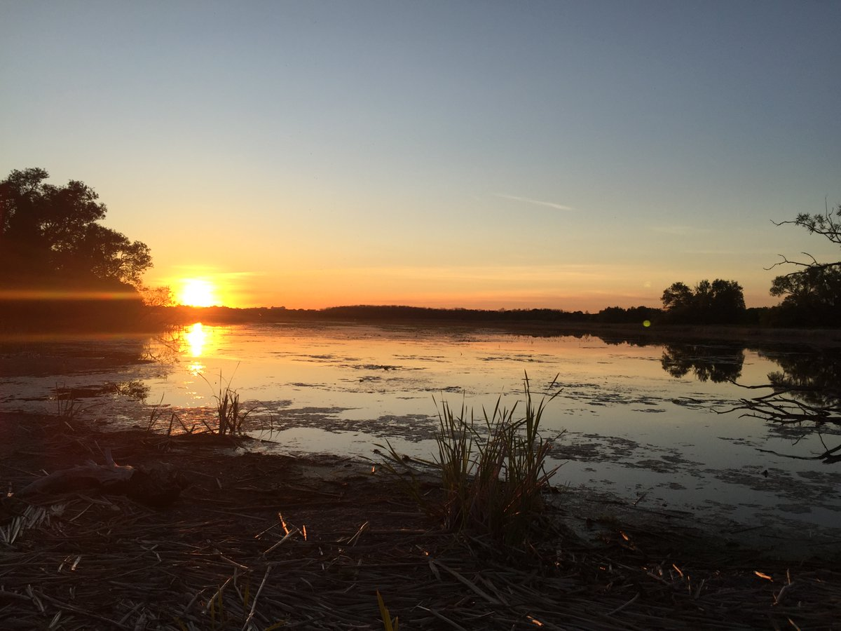 "Leslie Carmichael was kind enough to share some of her wonderful moments down at #SecondMarsh for #NationalCameraDay. She said, ""The marsh is a special place to me and [I] am looking to become more involved in general."" Thank you Leslie! #GetOutside #Oshawa https://t.co/yGhx6eF2s1"