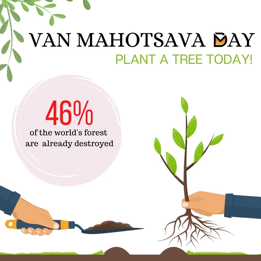 Plant a tree, make the earth pollution free!  #digitalmarketing #marketing #seo #business #branding #advertising #MarketingDigital #growthmindset #growth #entrepreneur #entrepreneurlife #entrepreneurship #quality #ecommerce #pinterest #plant #consulting #forest #tree #vanmahotsav https://t.co/KoGNNvabhj