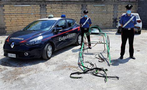 Carabinieri interrompono una corsa clandestina di cavalli, 16 catanesi denunciati - https://t.co/GbD0Ty9E6G #blogsicilianotizie