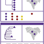 Image for the Tweet beginning: Latest preprint from the team